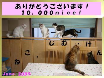 ADSC0525810000fcC.JPG